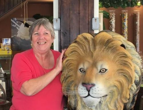Lion Pen and a lion in  Salou 2018